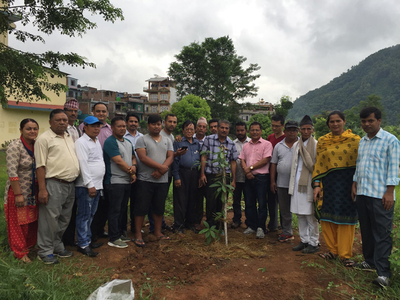 Plantation Program in Campus
